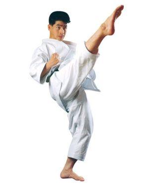 Karategi Tokaido TKW-11