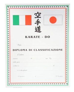 Diploma Karate Calssificazione