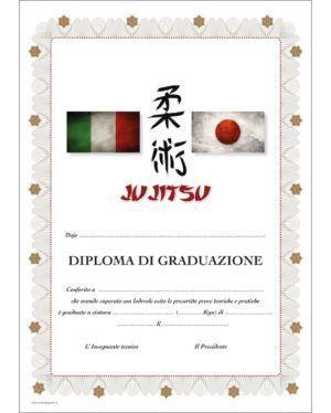 Diploma Jujitsu Graduazione