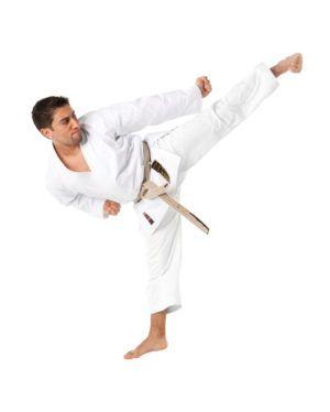 Karategi Tokaido Ultimate Tradizionale