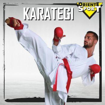 Karategi